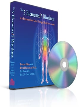 The 5 Elements - 5 Rhythms (3-DVD set)